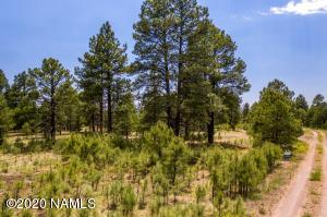 13180 Ghost Train Trail, Parks, AZ 86018
