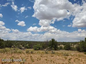 5463 S Estrella Road, Williams, AZ 86046