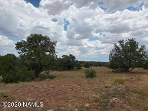 5073 S Sun Dog Trail, Williams, AZ 86046