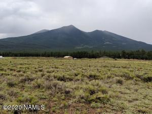 Tbd Dreamview Trail, Flagstaff, AZ 86001