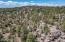 1755 Canyon Trail, Heber, AZ 85298
