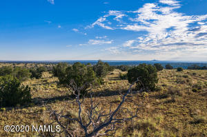 3890 S Red Butte Trail, Williams, AZ 86046