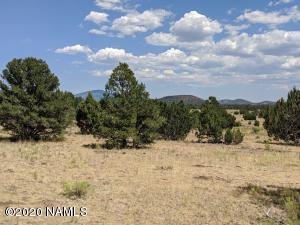 2390 Cosmos Way, Williams, AZ 86046