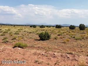 3208 Santa Clara Road, Williams, AZ 86046
