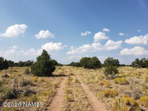 723 S Raven Hill Lane, Williams, AZ 86046