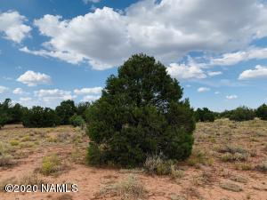 4249 E Wingfield Road, Williams, AZ 86046