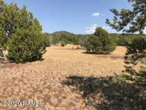 1329 Grantham Ranch Road, Williams, AZ 86046