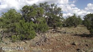 802 E Hualapai Trail, Williams, AZ 86046