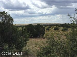 9270 S Adobe Trail, Williams, AZ 86046