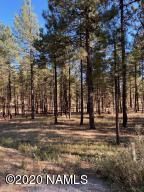 4795 S Flagstaff Ranch Road, Flagstaff, AZ 86005