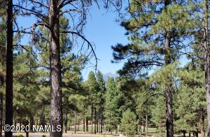 3642 S Clubhouse Circle, Flagstaff, AZ 86005
