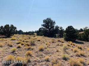 2084 S Bluebell Road, Williams, AZ 86046