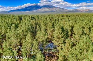 3150 Forest Hills Drive, Flagstaff, AZ 86001