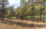 3405 W Picket Line, Flagstaff, AZ 86005