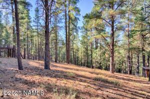 2892 Kletha Trail, Flagstaff, AZ 86005