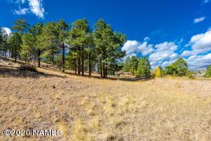 4551 Green Mountain Drive, 66, Flagstaff, AZ 86004
