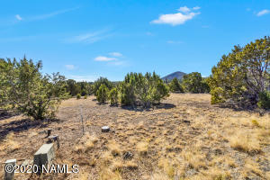 8882 Arroyo Trail, Flagstaff, AZ 86004