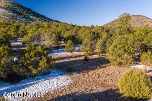 6574 N Mantenga La Fe, Williams, AZ 86046