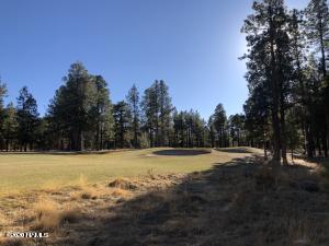 2869 W Castle Pines Drive, 152, Williams, AZ 86046