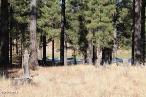 2460 E Del Rae Drive, Flagstaff, AZ 86005