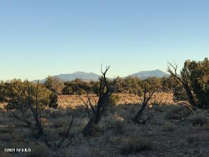 000 N Wyandotte Road, Williams, AZ 86046