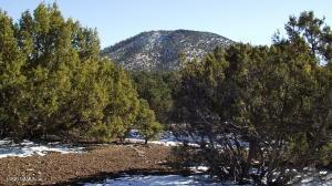 2314 E Clear Point Way, Williams, AZ 86046