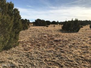 1608 E Prospect Lane, Williams, AZ 86046