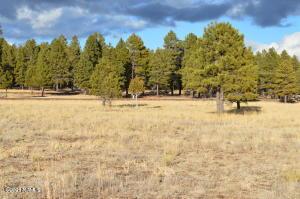 1733 Country Club Road, Williams, AZ 86046