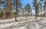 20393 SQUARE FOOT LOT
