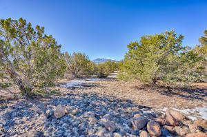 0 Deadman Flat Road, Flagstaff, AZ 86004