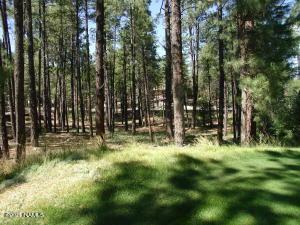 3764 Griffiths Spring, Flagstaff, AZ 86005
