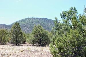 10425 N Overlook Drive, Williams, AZ 86046