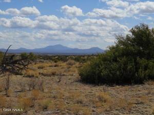 10424 W Line Cook Trail, Williams, AZ 86046