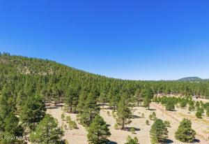 970 S Appaloosa Trail, Williams, AZ 86046