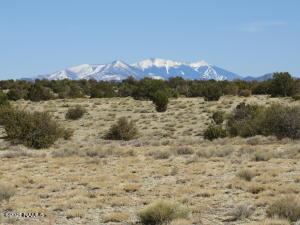 8151 Mineral Wells Road, Williams, AZ 86046