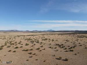 8179 S Big Bear Road, 466, Williams, AZ 86046