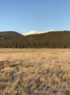 0 Shadow Mountain Drive, Bellemont, AZ 86015
