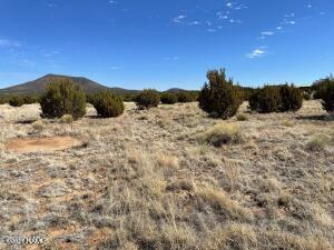 2651 E Soaring Eagle Lot C Road, Williams, AZ 86046