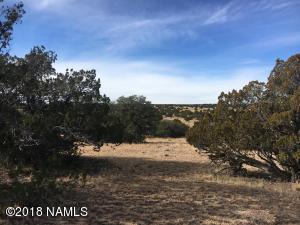 12688 Pipecreek Loop, Williams, AZ 86046