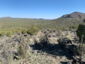 476 Westwood Ranches, Williams, AZ 86046