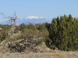 3413 N Peakview Road, Williams, AZ 86046