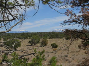 000 Red Butte Road, Williams, AZ 86046