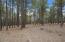 2061 Peery Francis, Flagstaff, AZ 86005