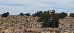 3285 E Valle Road, Williams, AZ 86046