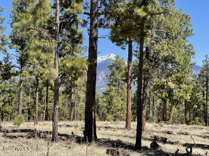 2k Hidden Hollow Road, Flagstaff, AZ 86001