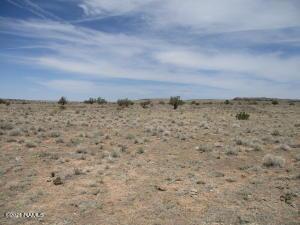 6394 S Prairie Grass Road, 295, Williams, AZ 86046