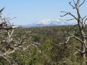 5386 S Sun Dog Trail, Williams, AZ 86046