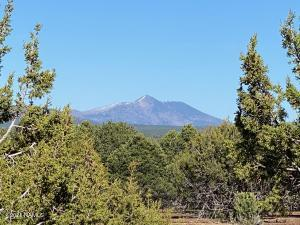 7065 Tulip Trail, 9, Williams, AZ 86046