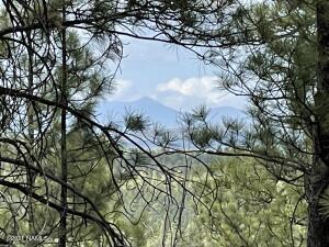 18010 S Dixie Ln, Munds Park, AZ 86017