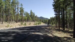 1136 Timbernook Crossing Pass, Williams, AZ 86046